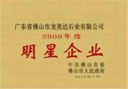 龙美达获评2009年度明星企业